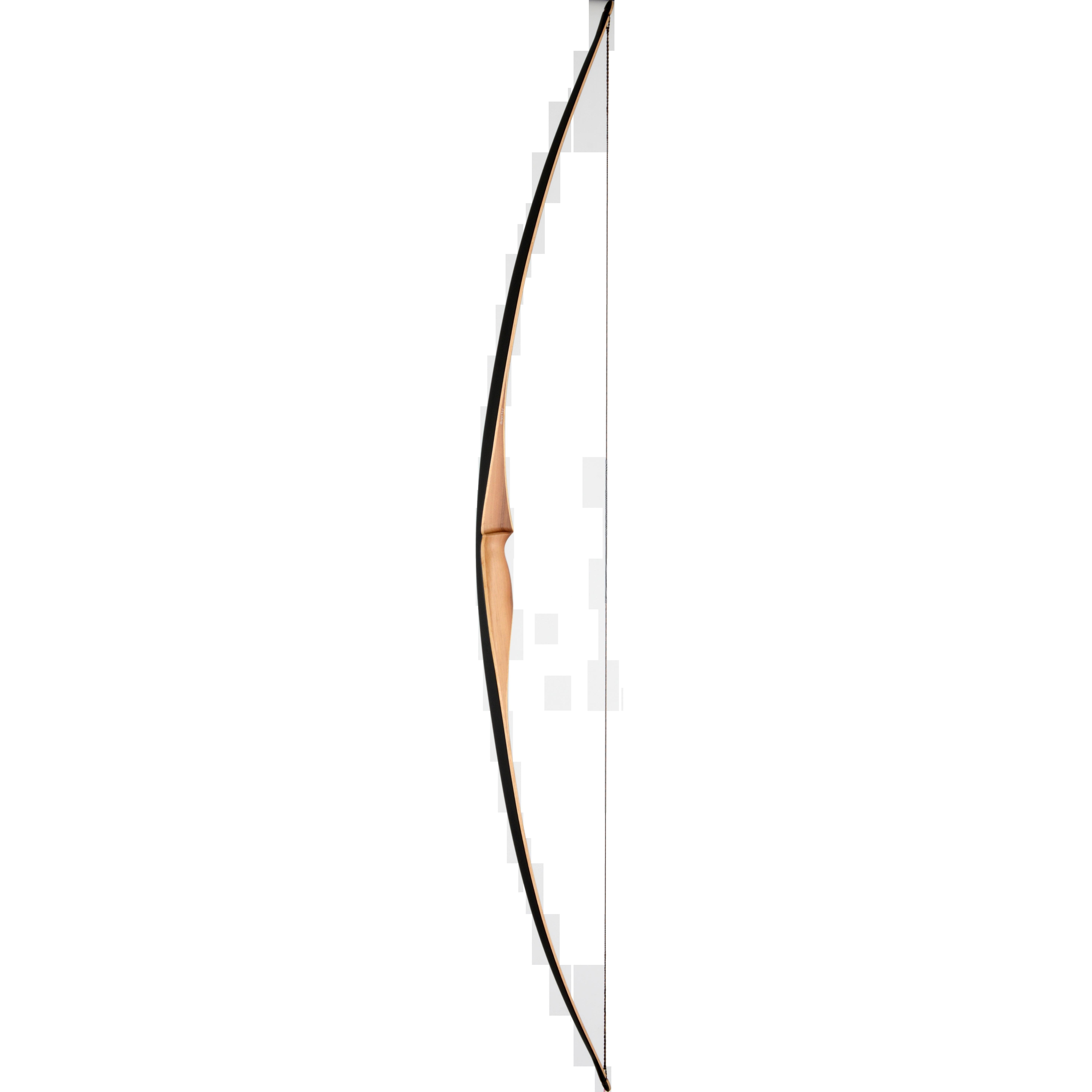 Dakota Modell 2019